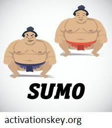 SUMo 5.12.9 Build 481 Crack