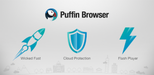 Puffin Browser 9.0.0.337 Crack
